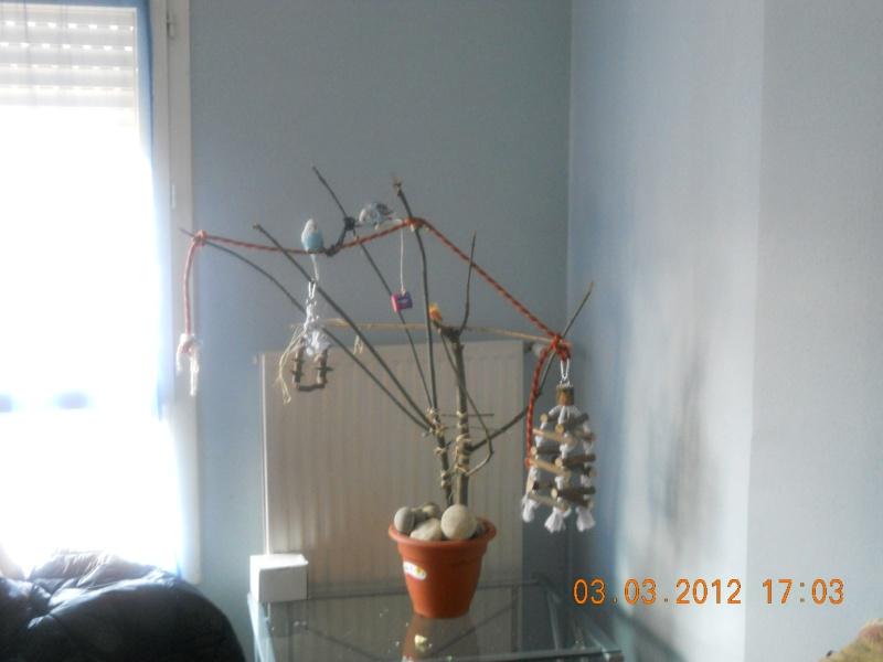 Nouvel arbre , est il bon ??? Dscn0914