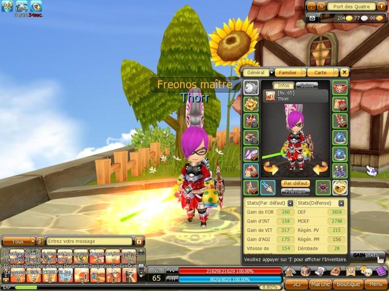 Candidature de Thorr :) Dragon36