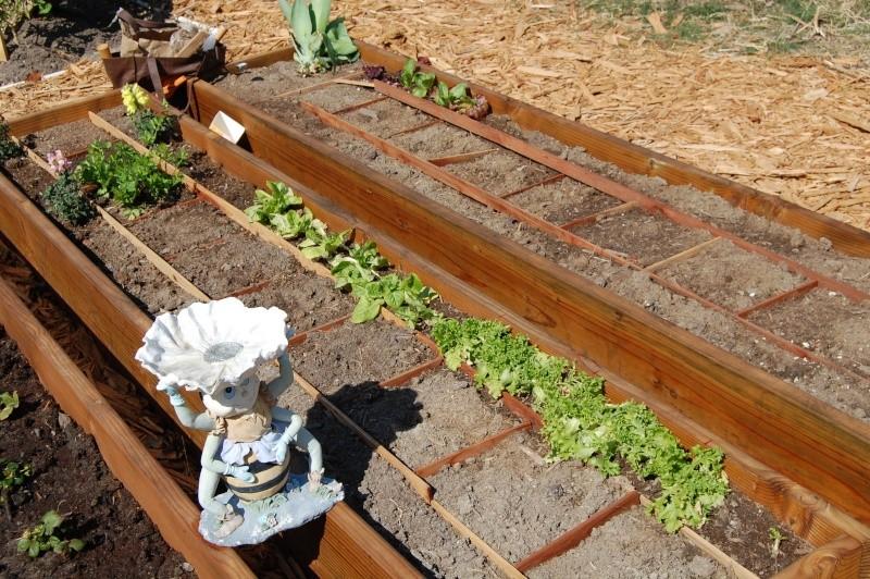 My Garden Adventure, 2012 17_tra10