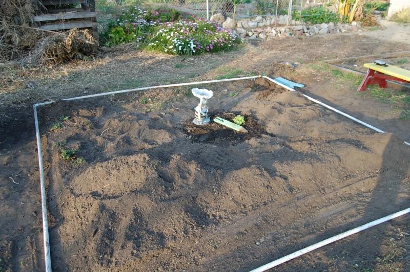 My Garden Adventure, 2012 Dsc_3011