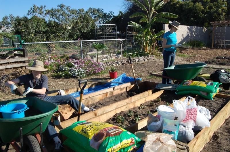 My Garden Adventure, 2012 Dsc_3014