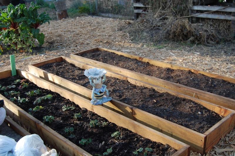 My Garden Adventure, 2012 Dsc_3015