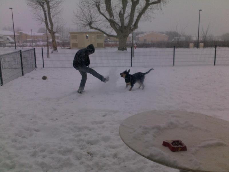 kevin et son chien goliath 9 mois 05022011
