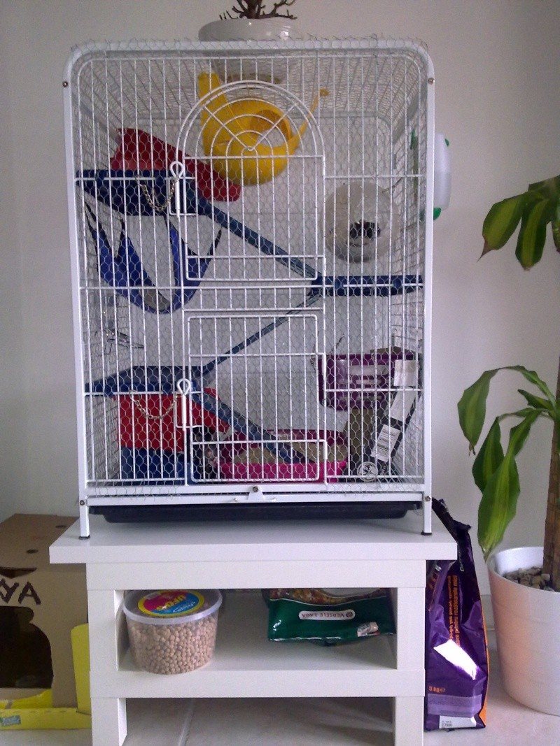 grillager - Grillager une cage  22052013