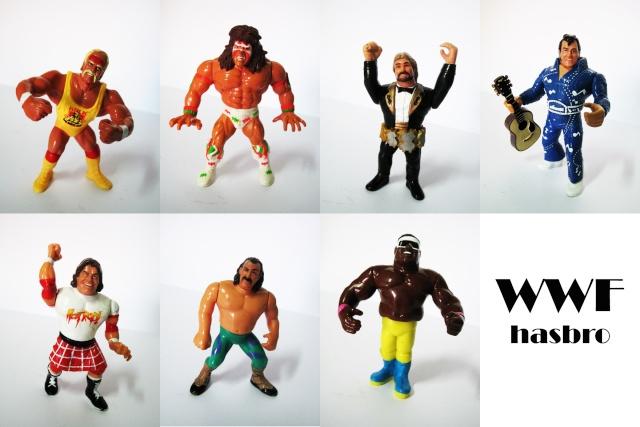 Hasbro WWF Wwf10