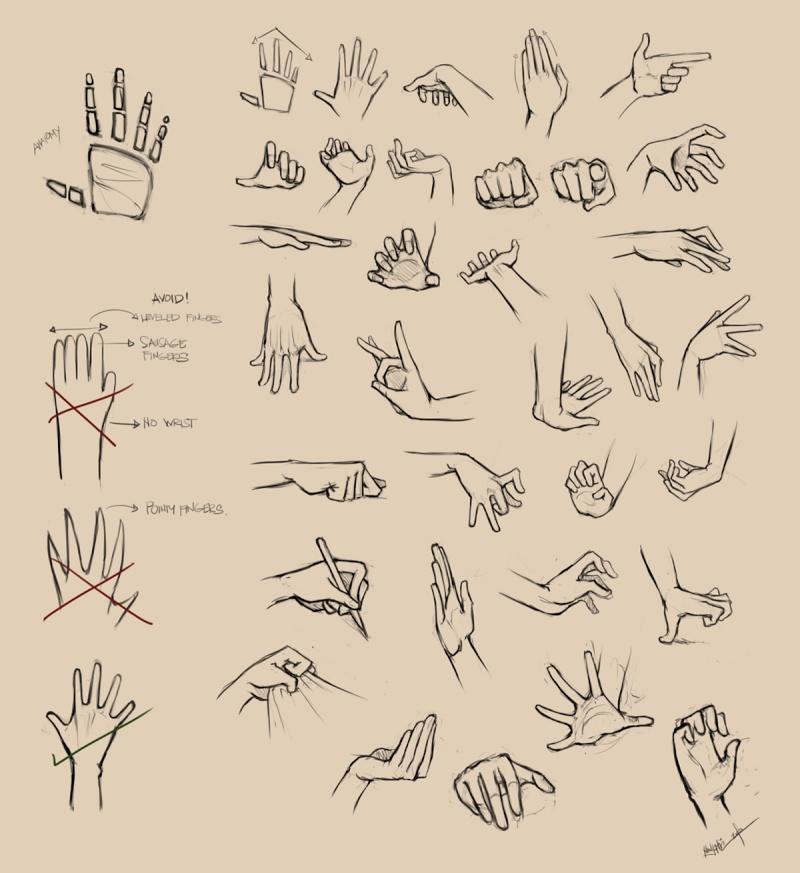 [Aide] Pied et main dans differente position Hands_10