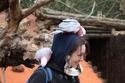 Chris_Pr0lls - Pairi Daiza (2012_03_31) 01810