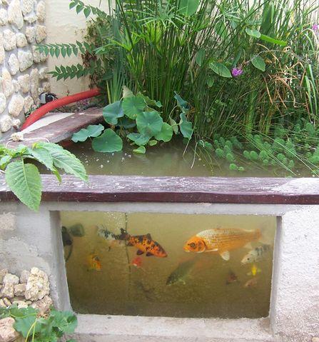 Mon bassin 110