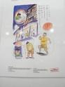 Les photos spécial Japan Expo - Page 2 P7060015