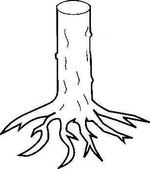 La souche d'arbre arrachée Souche10
