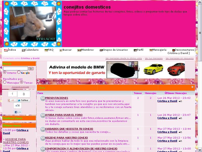 conejitos domesticos Imagen10