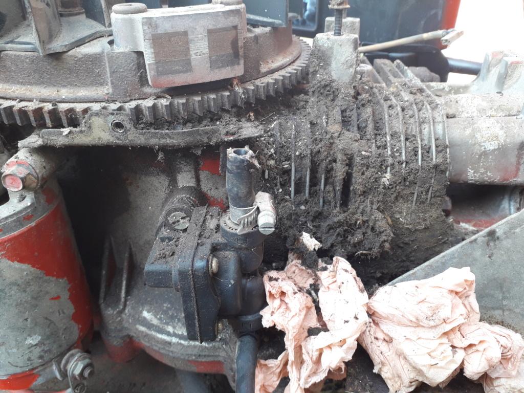 tracteur tondeuse  20190431