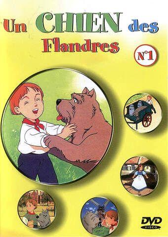 Le chien des Flandres 12724810