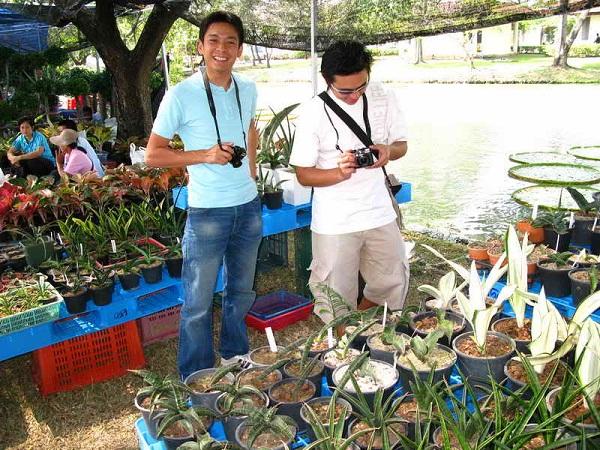 Флора фестиваль  в Тайланде Img_0918