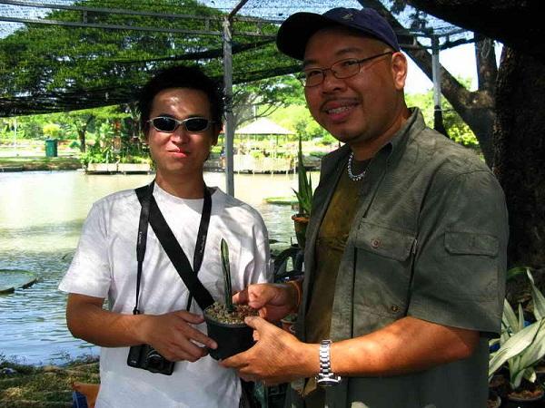 Флора фестиваль  в Тайланде Img_0919
