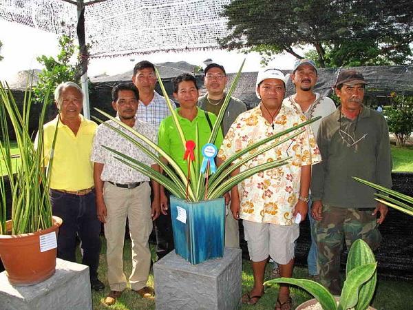 Флора фестиваль  в Тайланде Img_1125