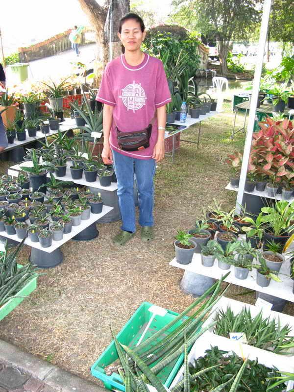 Флора фестиваль  в Тайланде Img_1210