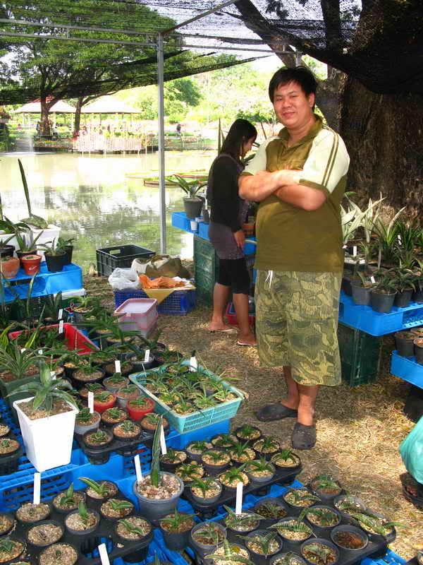 Флора фестиваль  в Тайланде Img_1412