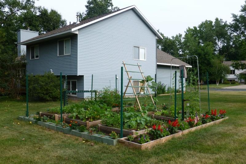 New garden for 2012 2012-010