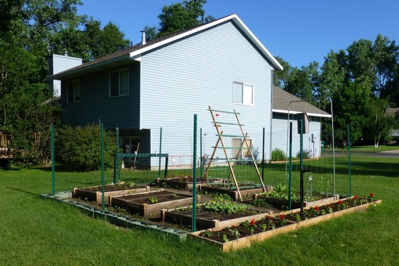 New garden for 2012 P1000010