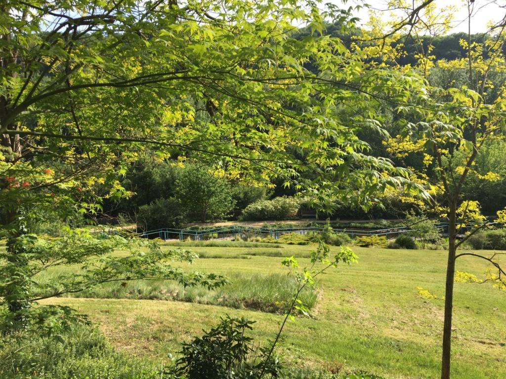 (24) Les Jardins d'Eau - Carsac-Aillac (Sarlat) - Page 3 Img_0641