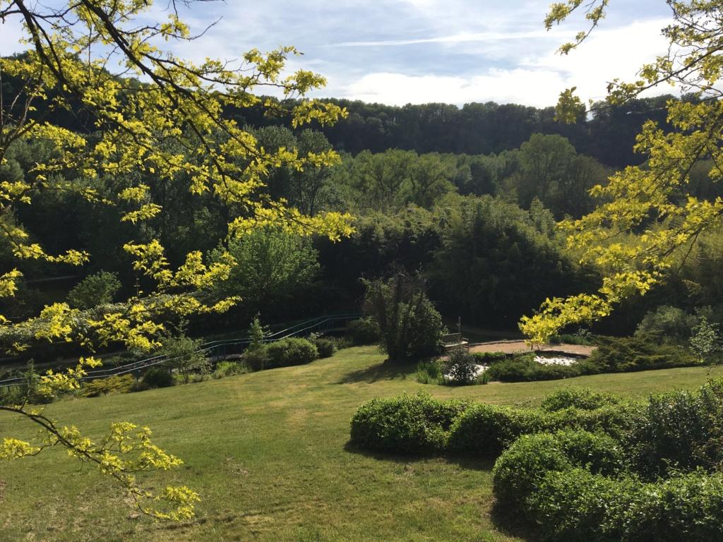 (24) Les Jardins d'Eau - Carsac-Aillac (Sarlat) - Page 3 Img_0642