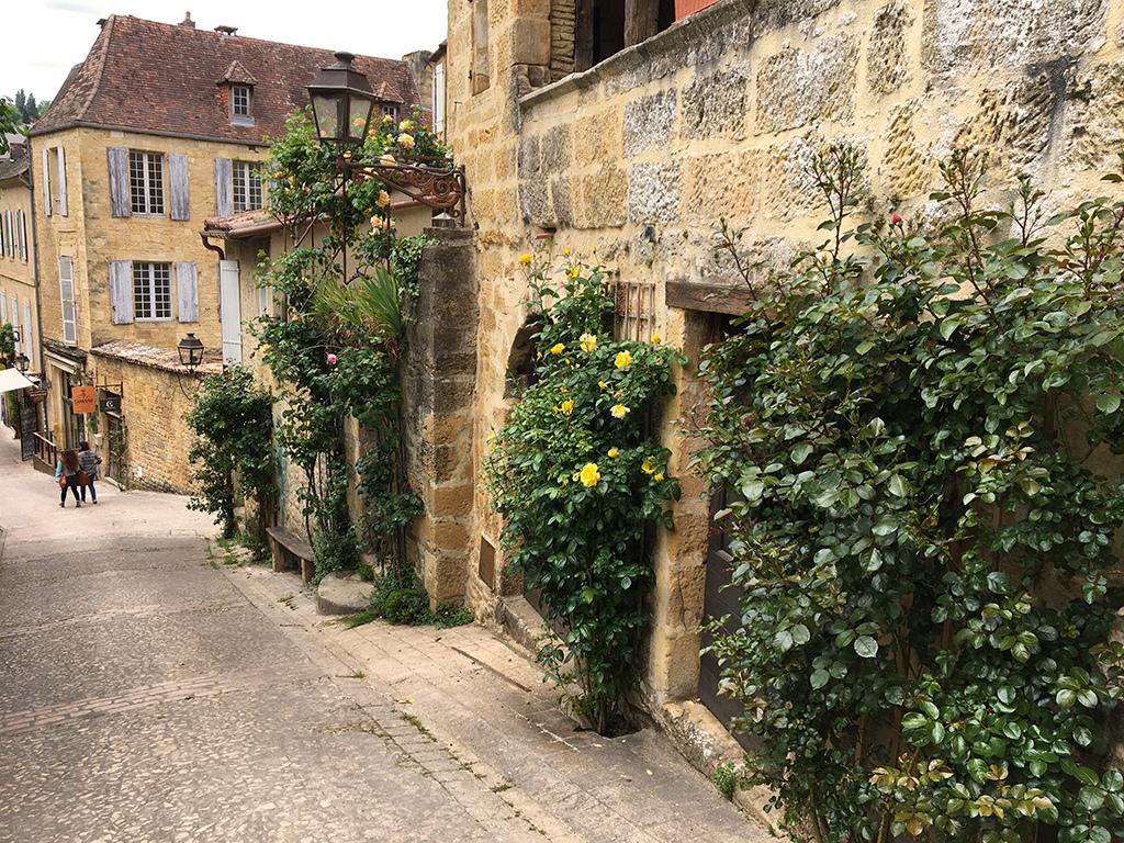 Végétaliser un trottoir - Page 28 Rue_mo10