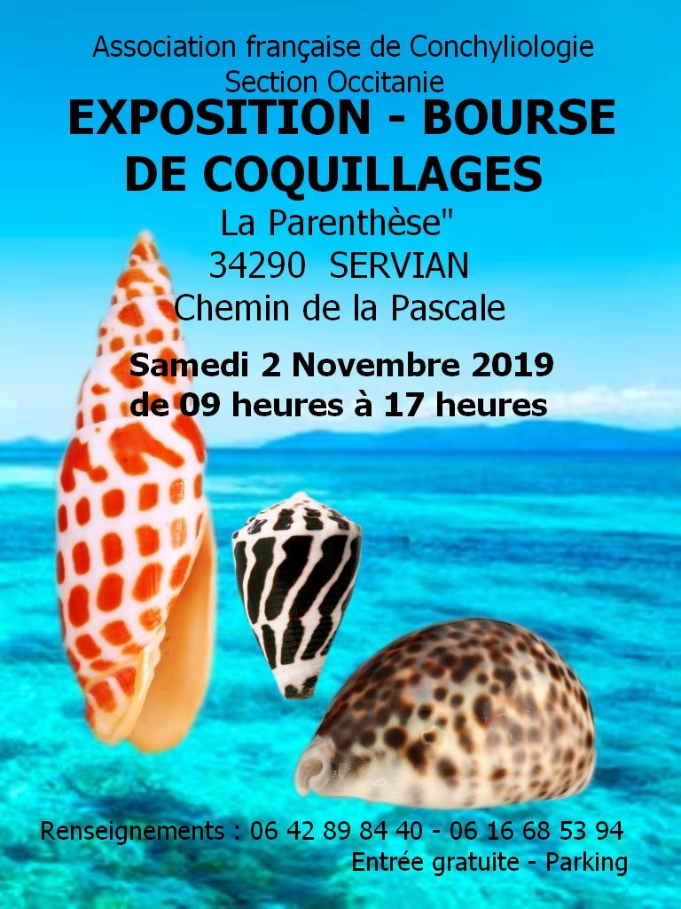 Bourse Occitanie 2 novembre 2019 Affich10