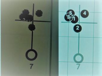 shotmarker : ciblerie électronique Compar10