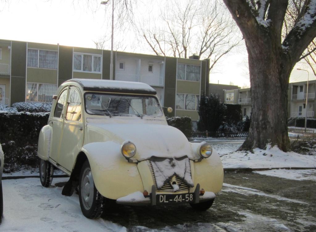 Citroën dans la neige Ice10