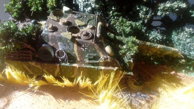 Photo souvenir -- M5A1 Stuart , SdKfz 173 Jagpanther & Panther  13-06-12