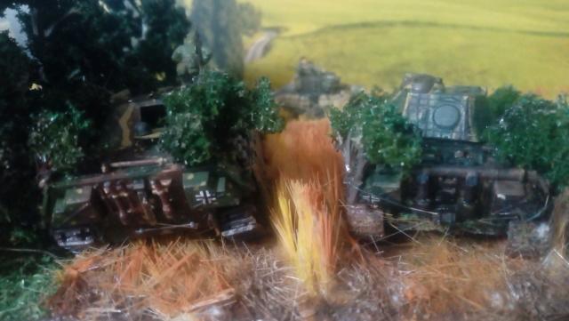 Photo souvenir -- M5A1 Stuart , SdKfz 173 Jagpanther & Panther  Fini_l13