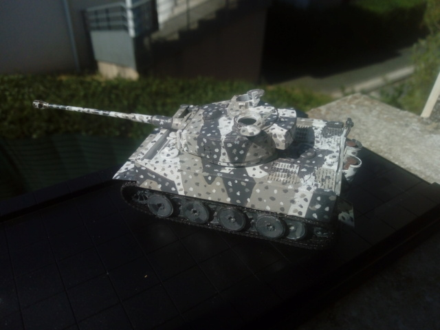 Why not  :  SdkfZ 182 Tigre 1 auf M -  Trumpeter 1/72 Img_2078