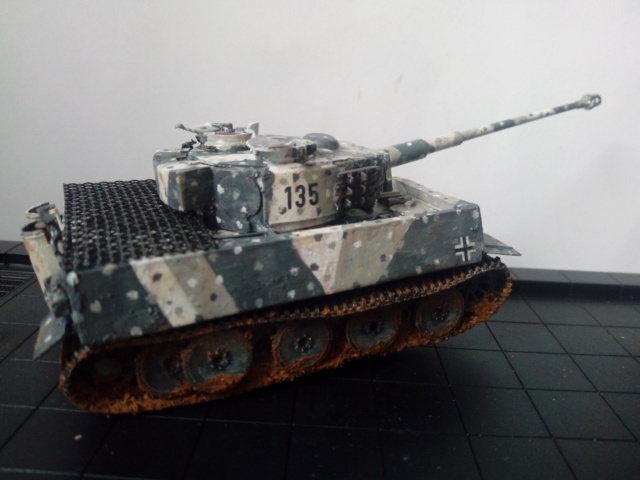Why not  :  SdkfZ 182 Tigre 1 auf M -  Trumpeter 1/72 Img_2082