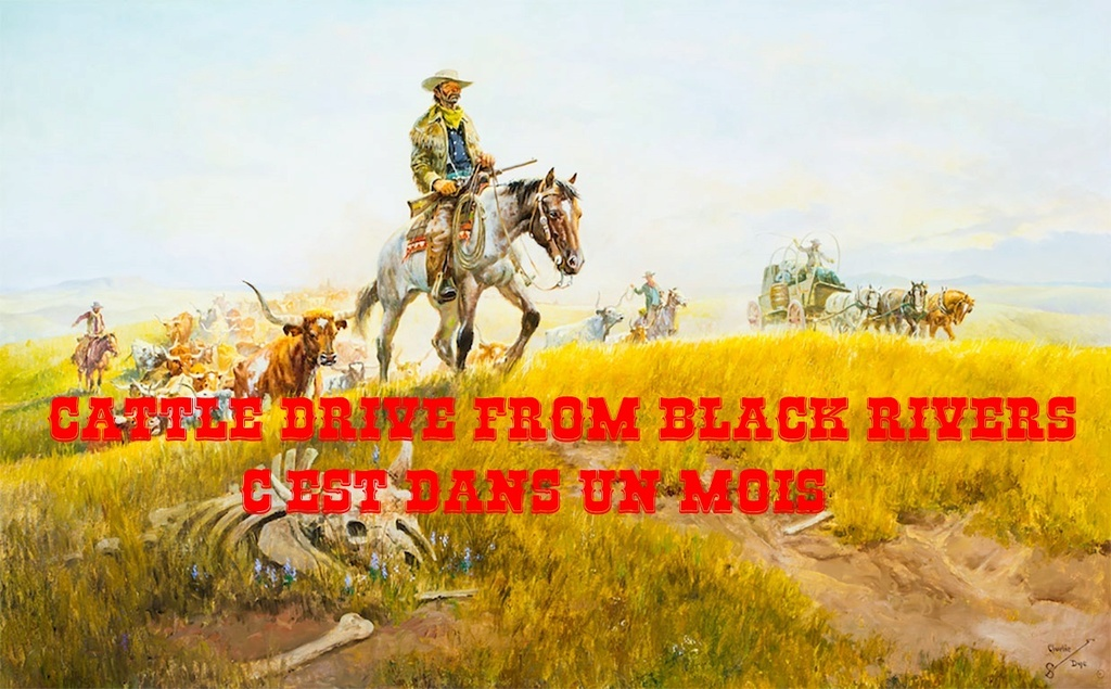 Cattle drive from Black Rivers (a new beginning) Diplom10