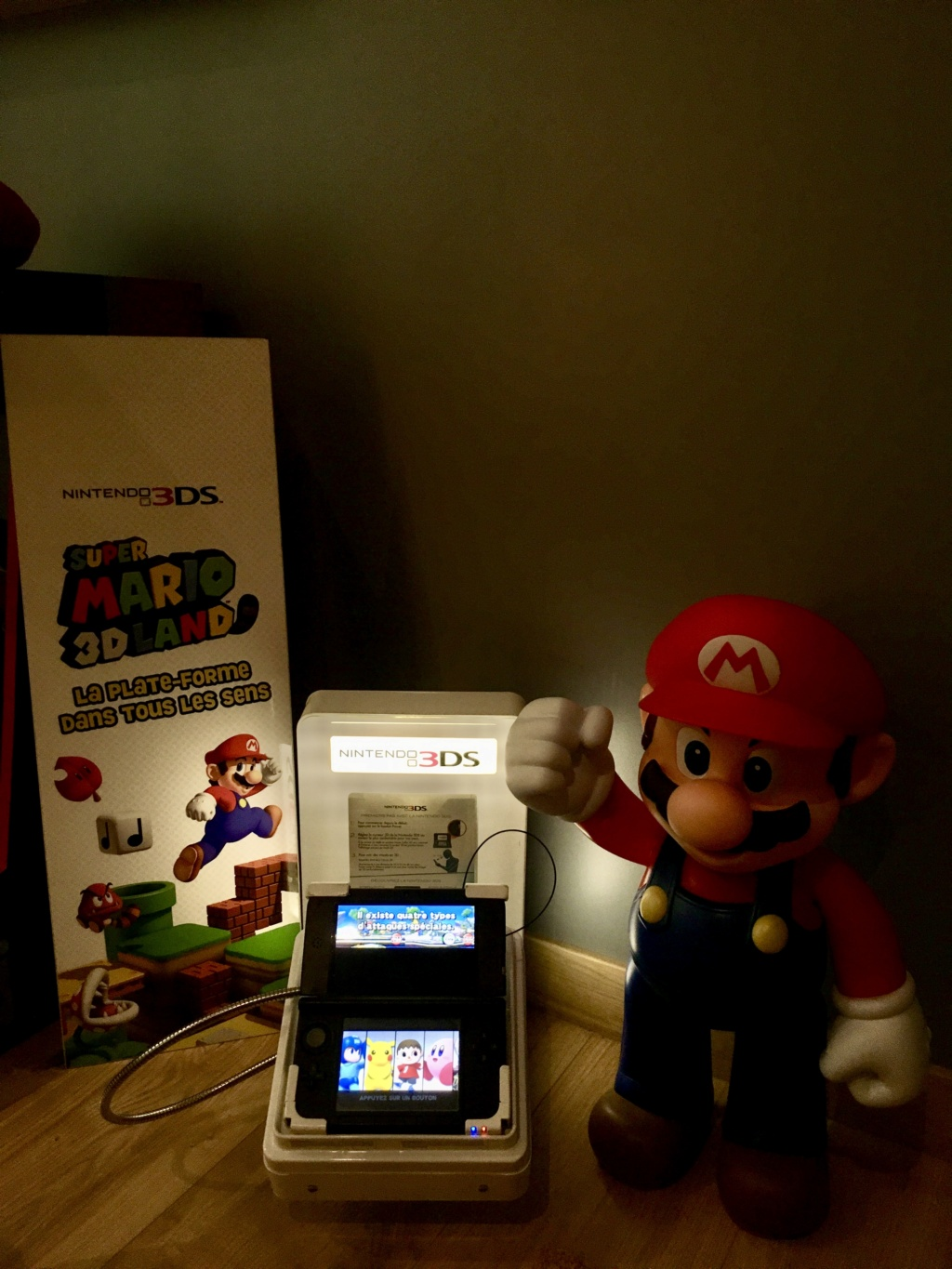 Vos cartouches nfr not for resale demo version 3ds ds etc... Img_e210