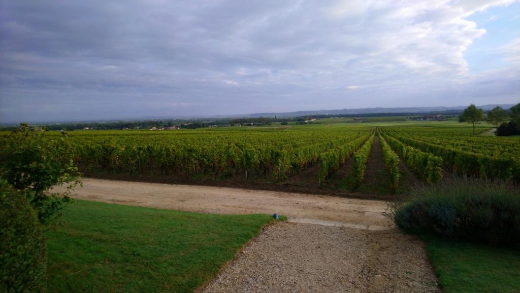 C.R. Weekend en Sud Gironde Dsc_0019
