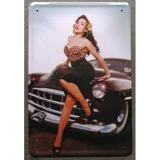 Pin-up et hotesse Pinup210