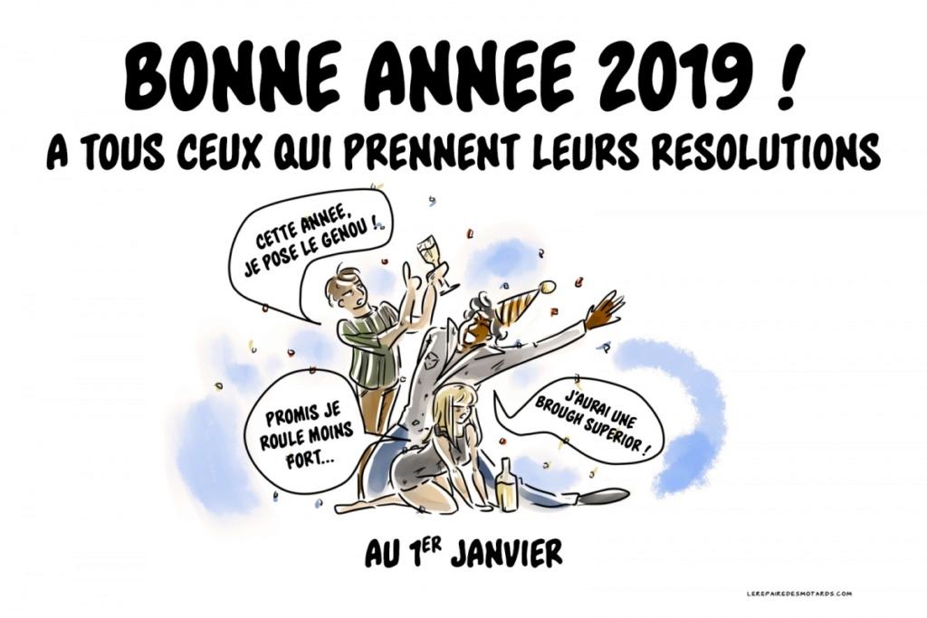 Bonne année 2019 Meille10
