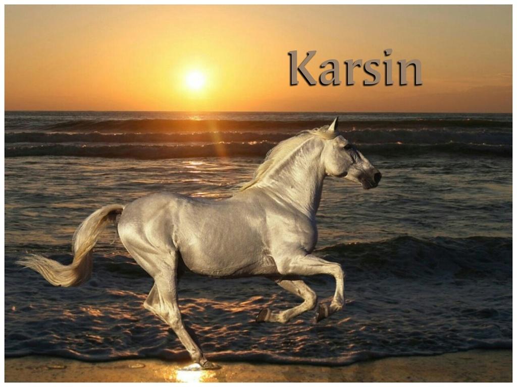 KARSIN
