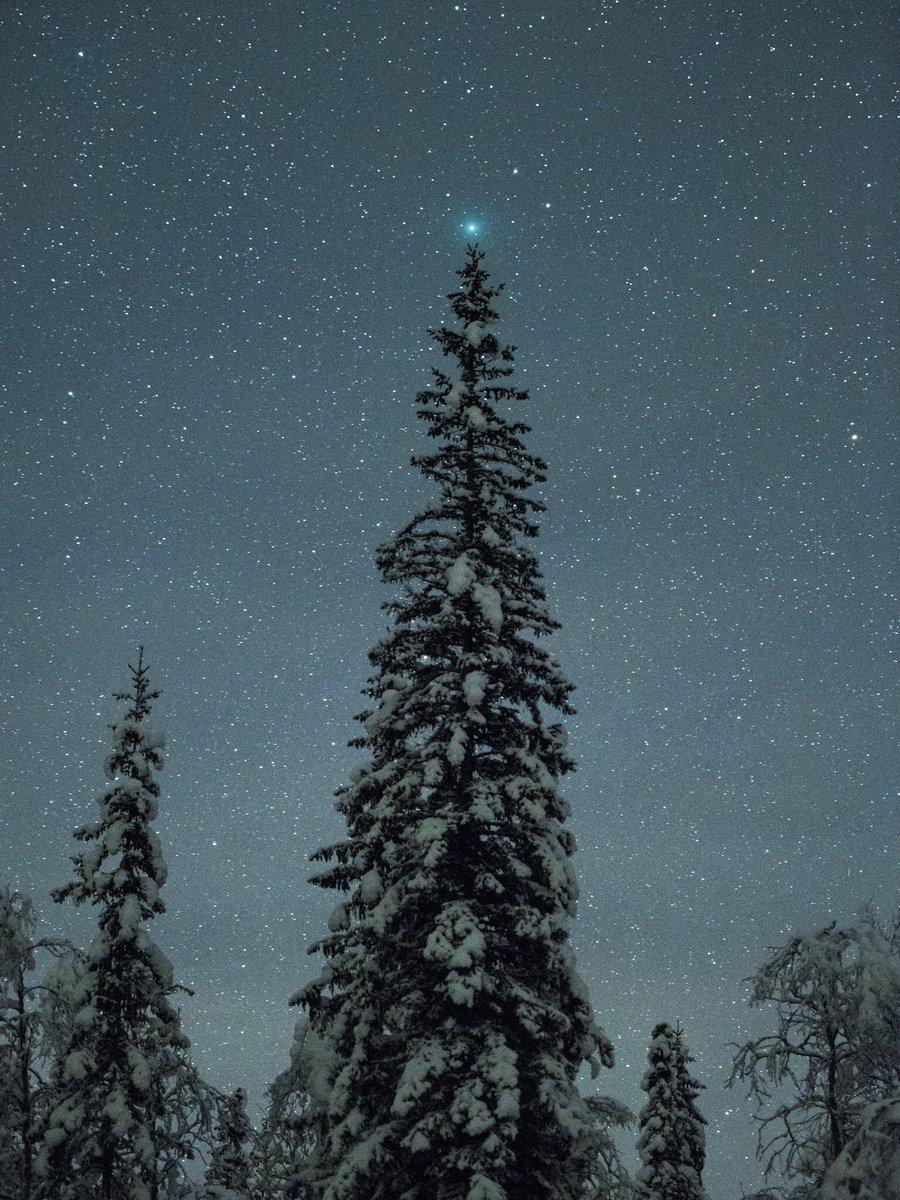 Comète 46P/Wirtanen en décembre 2018 1323