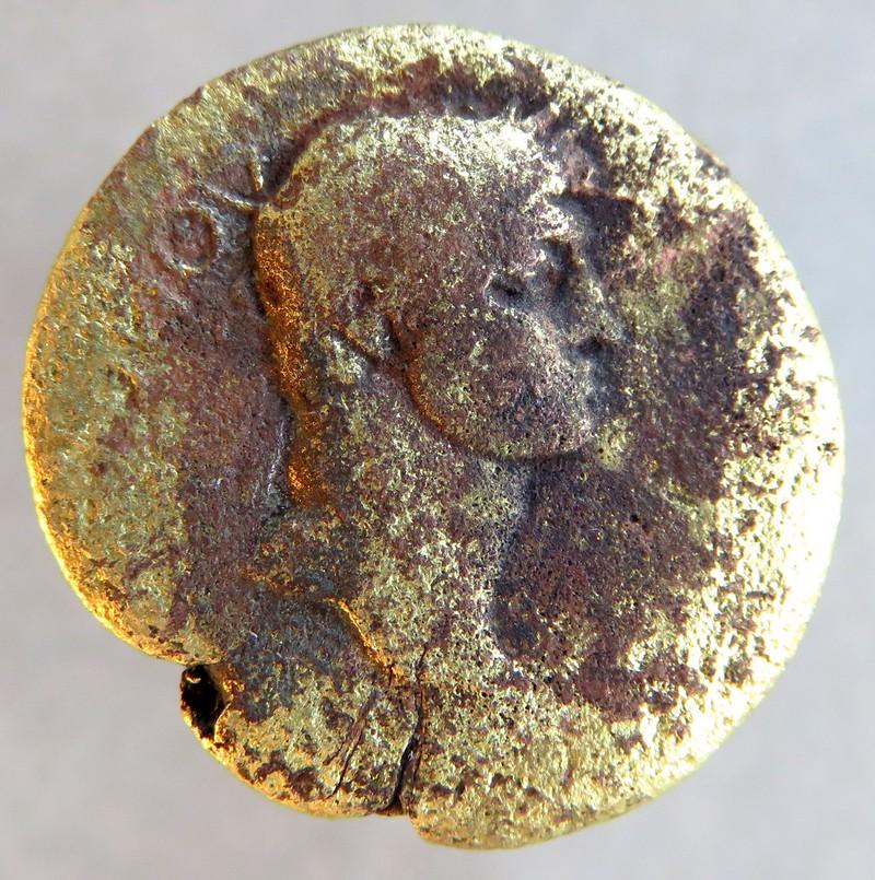Domitien - Moesie - RPC II, 405. Img_7521