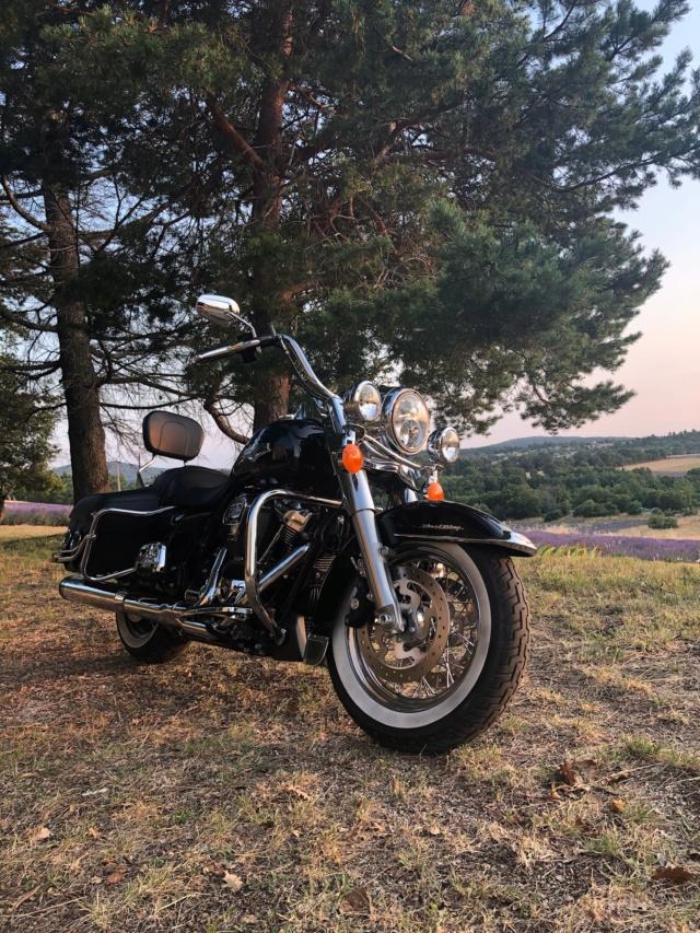 Road King uniquement, combien sur Passion-Harley  - Page 20 44dcc410