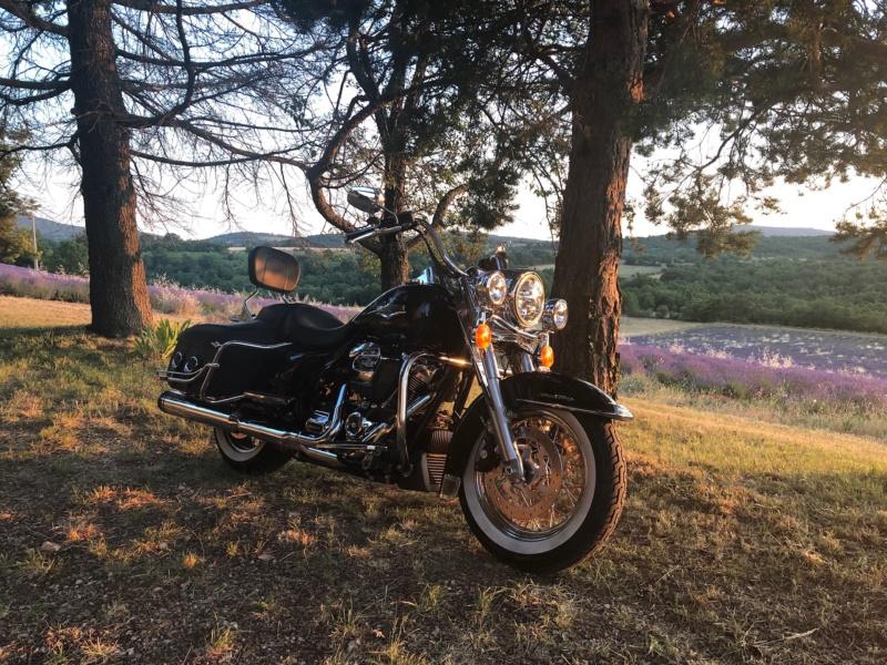Road King uniquement, combien sur Passion-Harley  - Page 18 5d5dae10