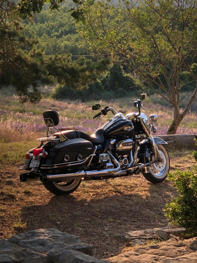 Road King uniquement, combien sur Passion-Harley  - Page 20 8619d310
