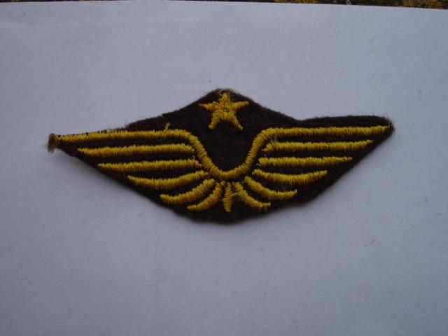 insigne tissu armée de l'air à identifier Dsc08816