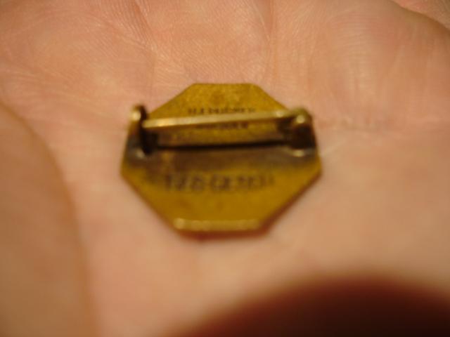 insigne allemand émaillée à identifier Dsc09644