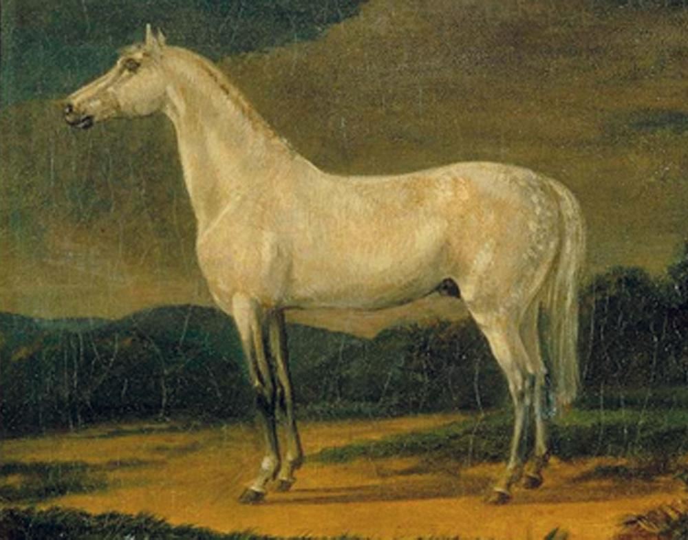 Eylau, dimanche 8 février 1807 Le_viz10