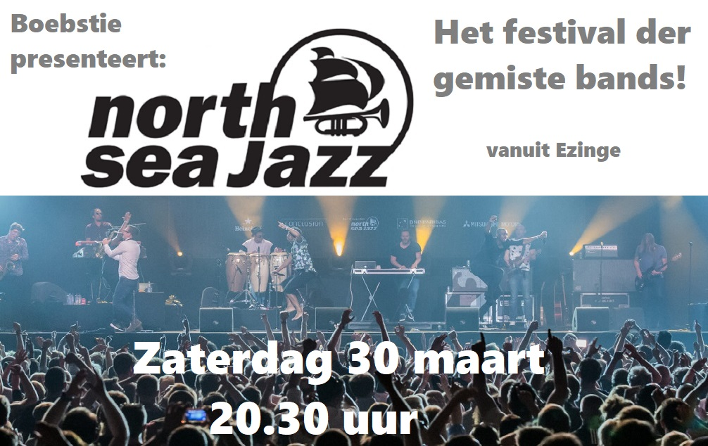 Zat. 30 maart: Het Festival der gemiste bands Nsj_bo10