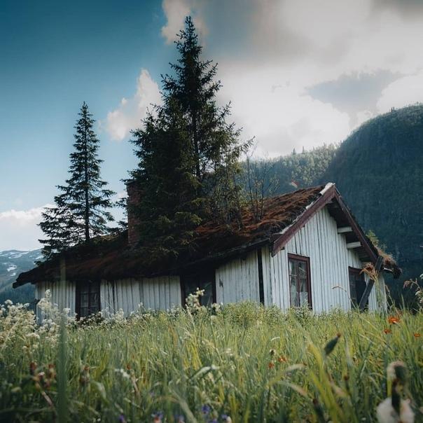 Роскошные пейзажи Норвегии - Страница 10 33vz0s10